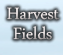 The Harvest Fields: Mission Work